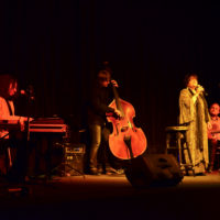 elżbieta adamiak koncert-13
